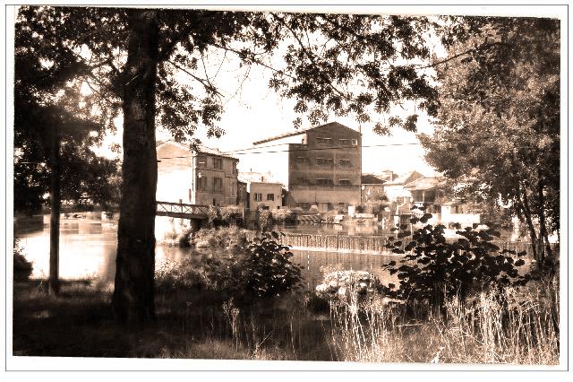 moulin4.jpg